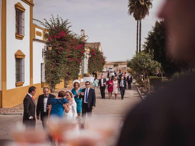 La boda de David y Obdulia en Dos Hermanas, Sevilla 55