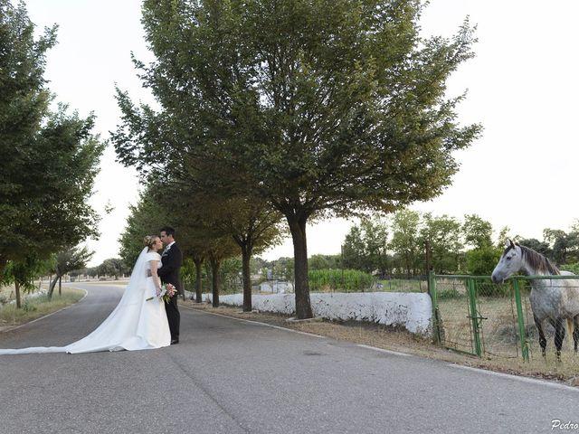 La boda de Javi y Ana en Cáceres, Cáceres 34