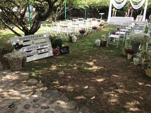 La boda de Javier y Amparo en Jerte, Cáceres 1