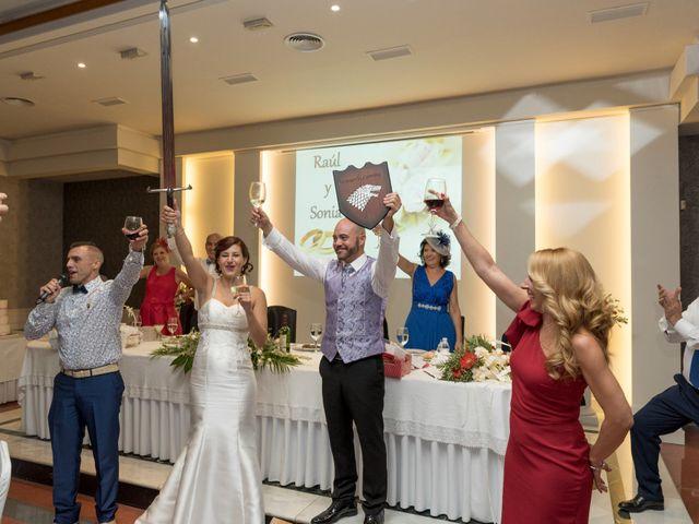 La boda de Raúl y Sonia en Jaén, Jaén 29