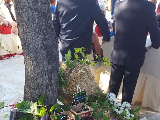La boda de Angel y Vanesa en Logrosan, Cáceres 5