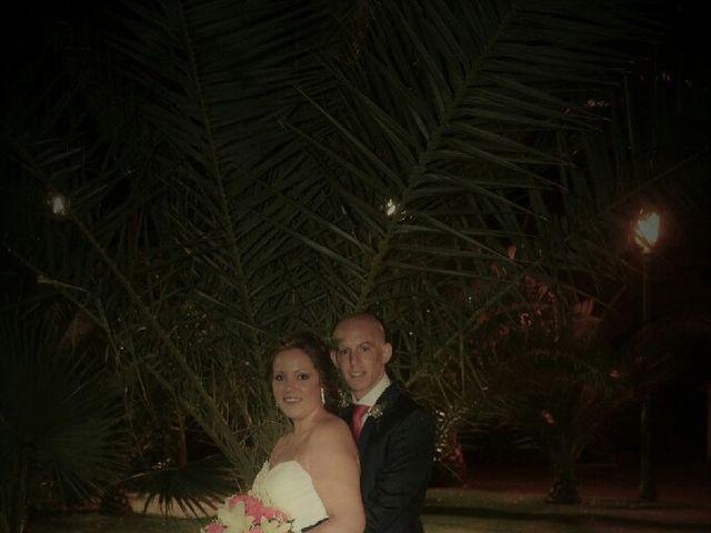 La boda de Jesus y Rosa en Sevilla, Sevilla 13