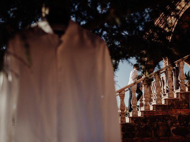 La boda de Luis y Esther en Carrion De Calatrava, Ciudad Real 4