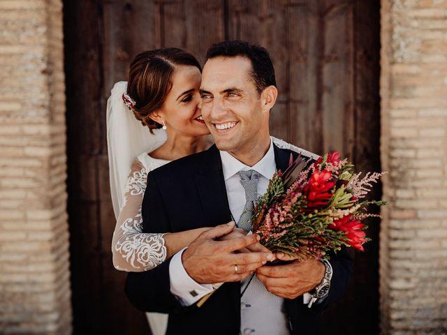 La boda de Luis y Esther en Carrion De Calatrava, Ciudad Real 40