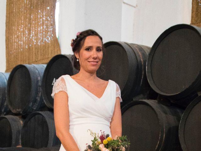 La boda de Sergio y Cristina en Jerez De La Frontera, Cádiz 18