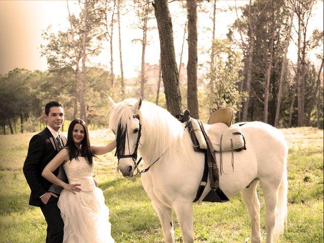 La boda de Dani y Nuria en Palau De Plegamans, Barcelona 22