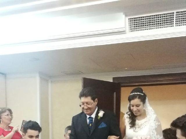 La boda de Pablo y Rocio en Linares, Jaén 6