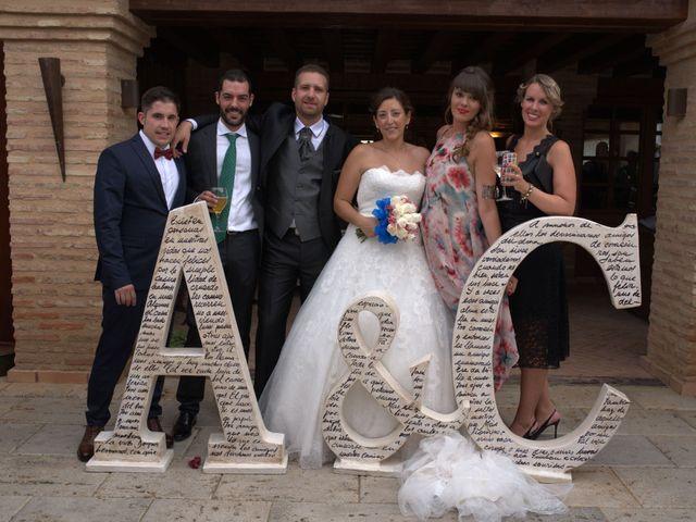 La boda de Alberto y Canty en Tiedra, Valladolid 1