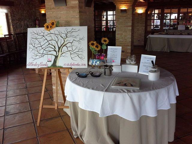 La boda de Alberto y Canty en Tiedra, Valladolid 24
