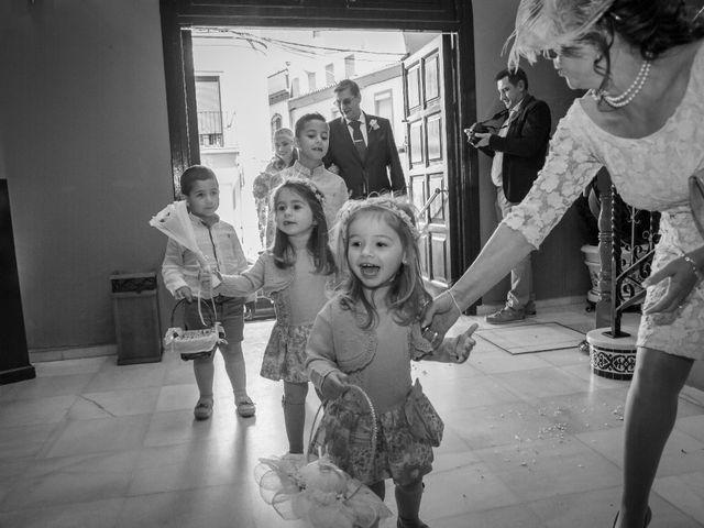 La boda de David y Rocio en Alcala De Guadaira, Sevilla 16