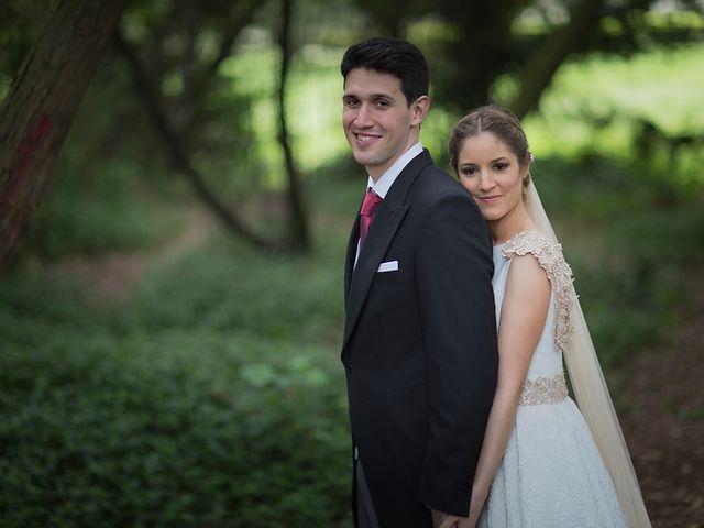 La boda de Alejandro y Claudia en Avilés, Asturias 27