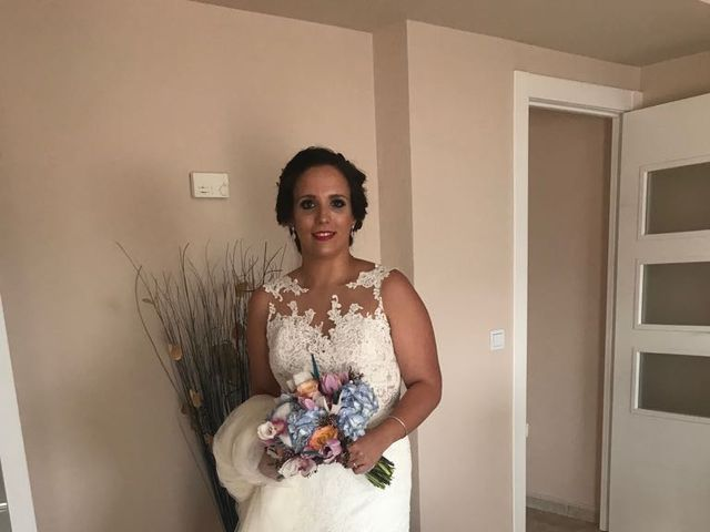 La boda de Pedro y Vicky en Villanueva De La Serena, Badajoz 5