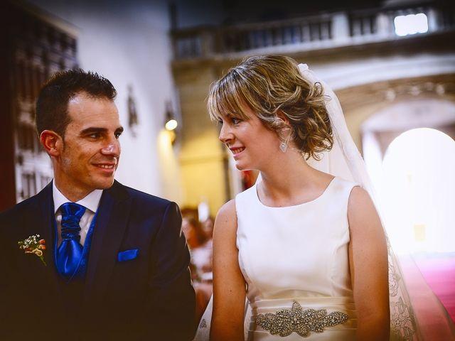 La boda de Angel Luis y Elena en Plasencia, Cáceres 19