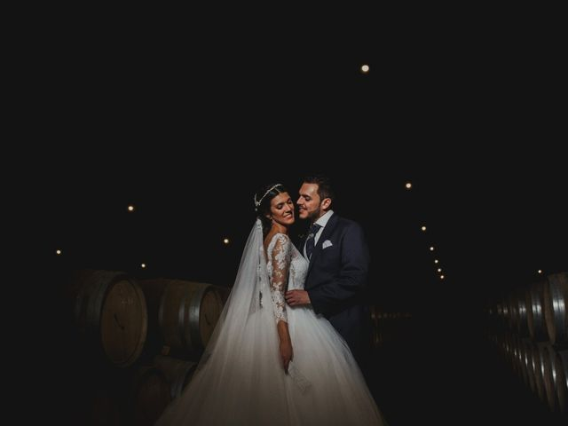 La boda de Jony y Ainhoa en Madroñera, Cáceres 43