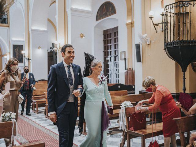 La boda de Rocio y Alejandro en Alcala De Guadaira, Sevilla 87