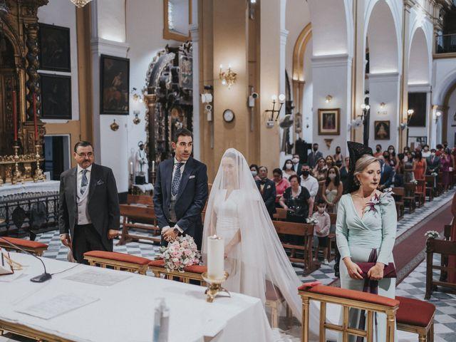 La boda de Rocio y Alejandro en Alcala De Guadaira, Sevilla 101