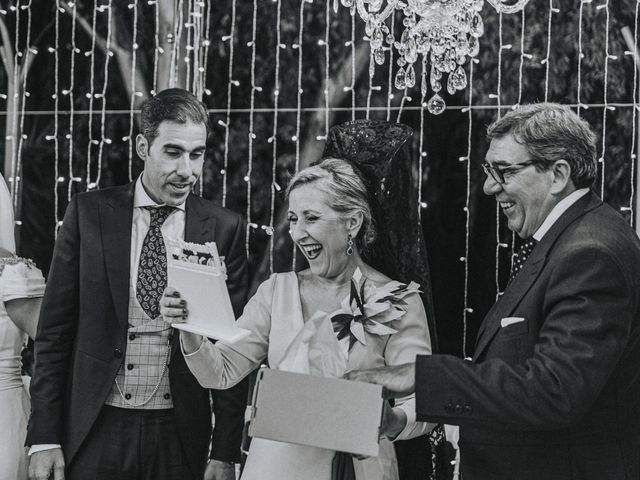 La boda de Rocio y Alejandro en Alcala De Guadaira, Sevilla 178