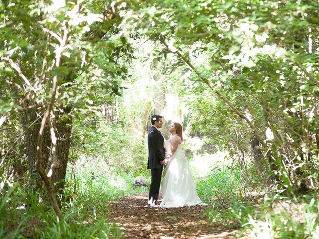 La boda de Alejandro y Merchy en La Orotava, Santa Cruz de Tenerife 39