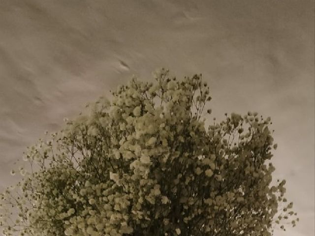 La boda de Javier y Elena en San Agustin De Guadalix, Madrid 6