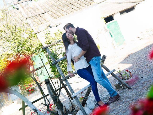 La boda de Luís y Rosa en La Carlota, Córdoba 4