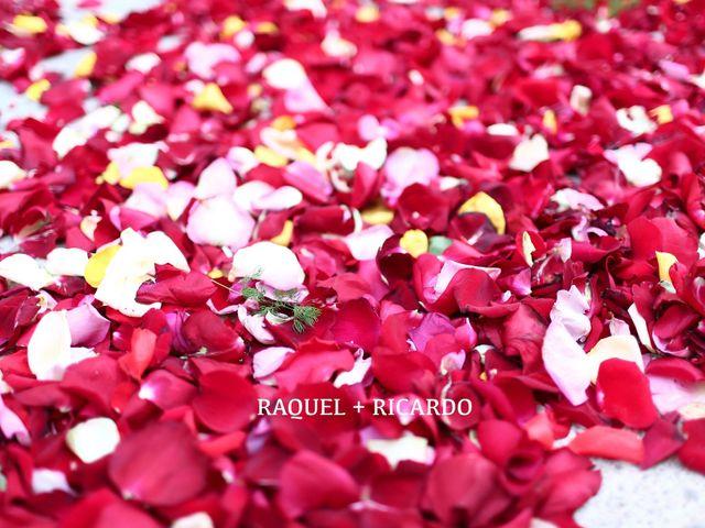 La boda de Ricardo y Raquel en Godella, Valencia 2