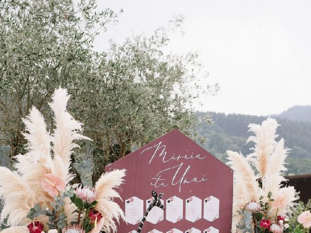 La boda de Unai y Mireia en Arceniega, Álava 4