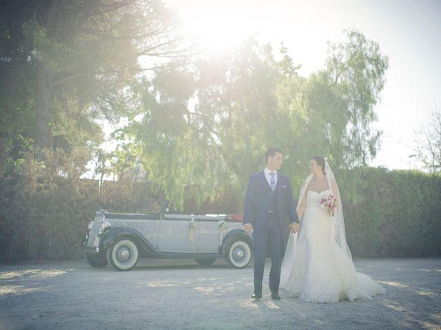 La boda de Jessica y Miguel en Jerez De La Frontera, Cádiz 14