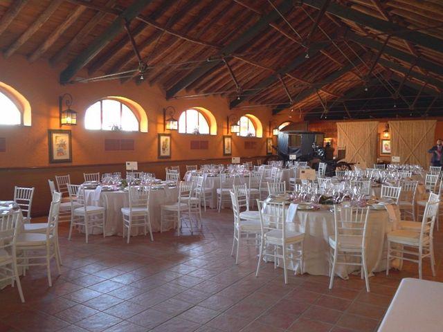 La boda de Alejandro y Isabel en Almendralejo, Badajoz 6