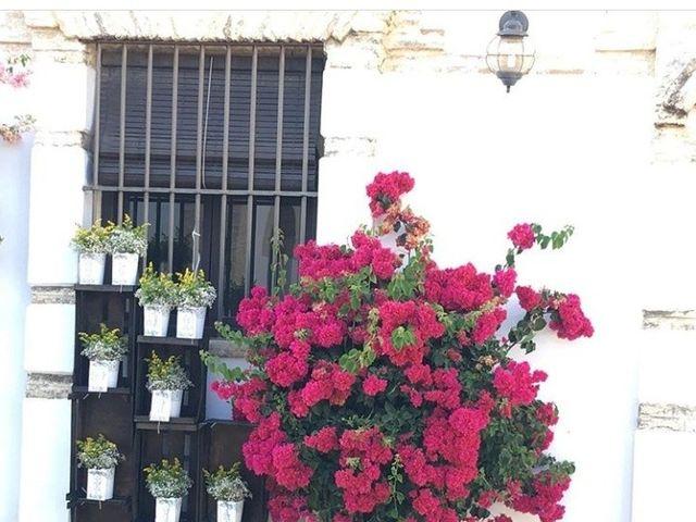 La boda de Adrian y Cristina en Sevilla, Sevilla 7