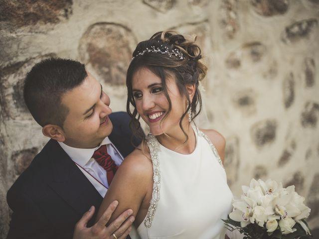 La boda de Iván y Alba en Ávila, Ávila 36