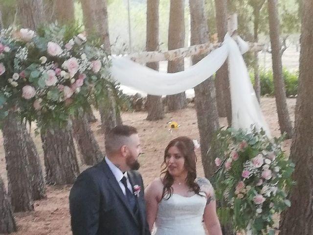 La boda de Jenny y Antonio  en L' Albiol, Tarragona 3