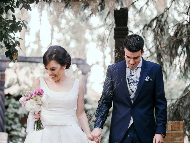 La boda de Carlos y Cristina en Alalpardo, Madrid 24