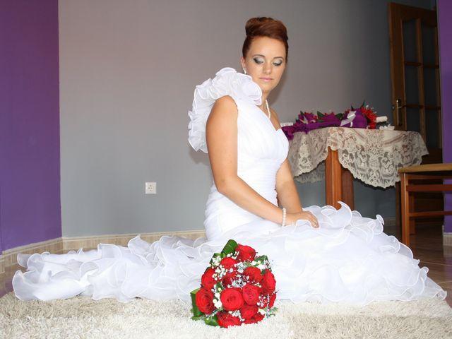 La boda de Loredana y Grigoras en La Roda, Albacete 14