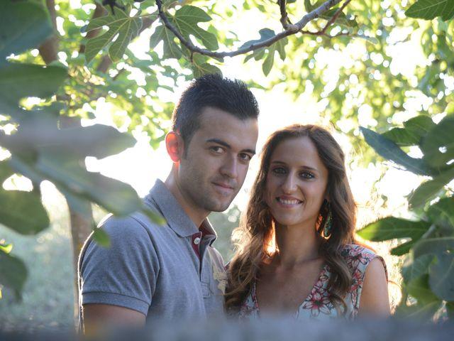 La boda de Javi y Ana en Argamasilla De Calatrava, Ciudad Real 17
