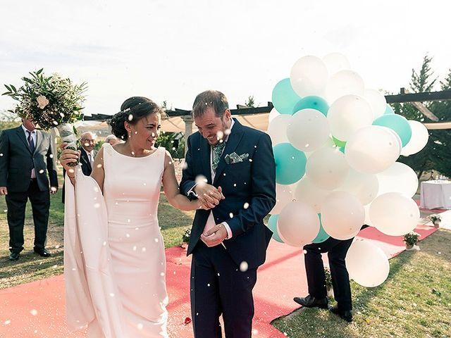 La boda de David y Virginia en Ávila, Ávila 71