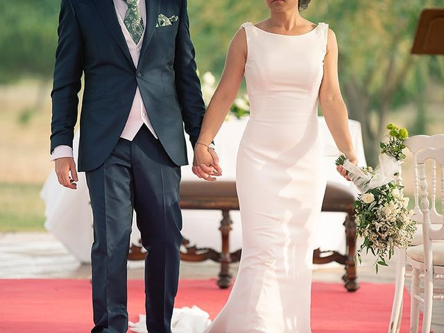 La boda de David y Virginia en Ávila, Ávila 81