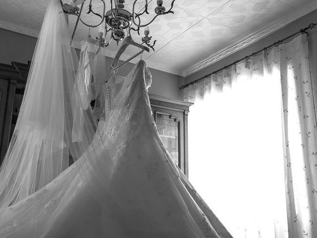 La boda de Sergio y Elisabeth en Archena, Murcia 9