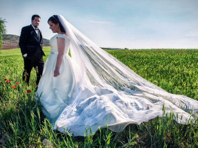 La boda de Miriam y Alvaro en Los Yebenes, Toledo 10