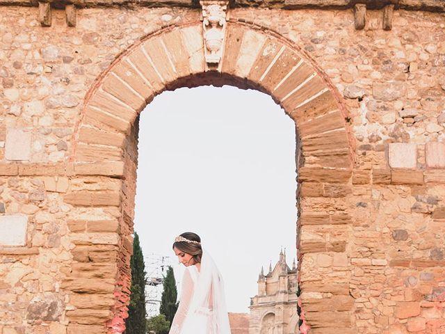 La boda de Samuel y Carmen en Antequera, Málaga 37