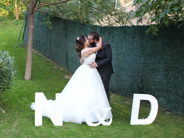 La boda de Nicole  y Daniel