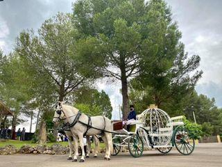 La boda de Marian y Nicolás  2