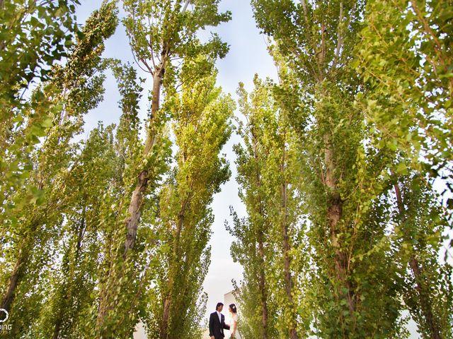 La boda de Manolo y Patricia en Tudela, Navarra 26