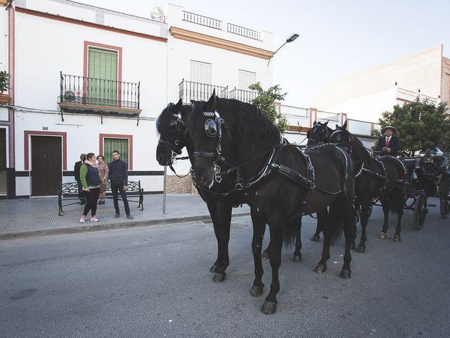 La boda de Elias y Encarni en Los Palacios Y Villafranca, Sevilla 112