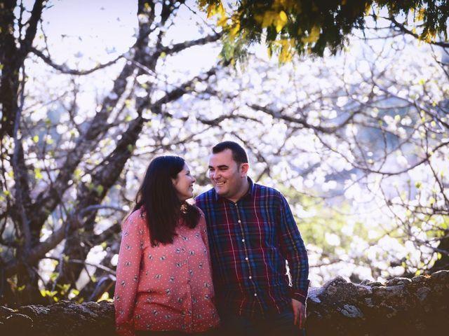 La boda de Alberto y Lorena en Plasencia, Cáceres 15