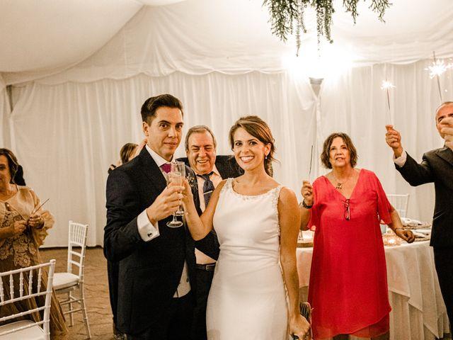 La boda de Iván y Cristina en Cáceres, Cáceres 36