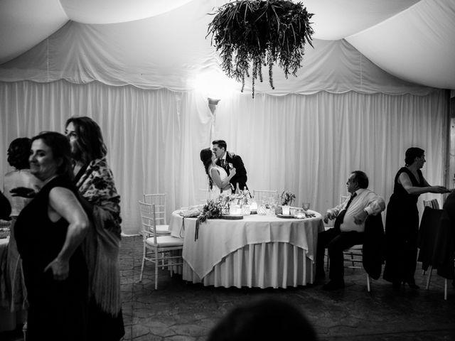 La boda de Iván y Cristina en Cáceres, Cáceres 39