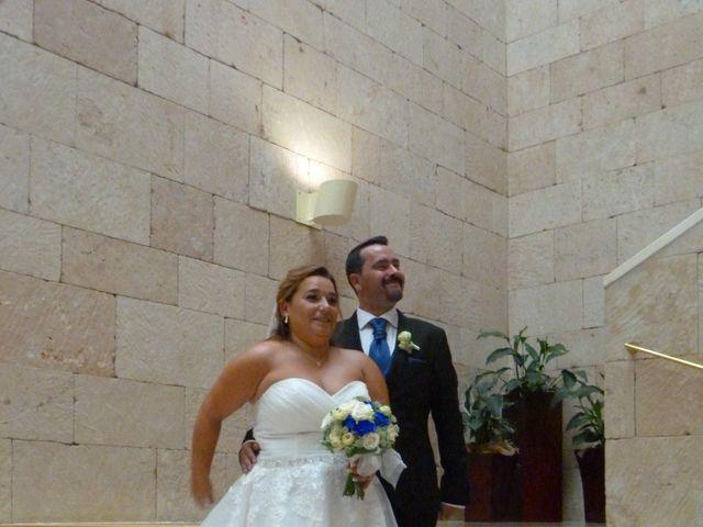 La boda de Gustavo y Luz  en Logroño, La Rioja 9