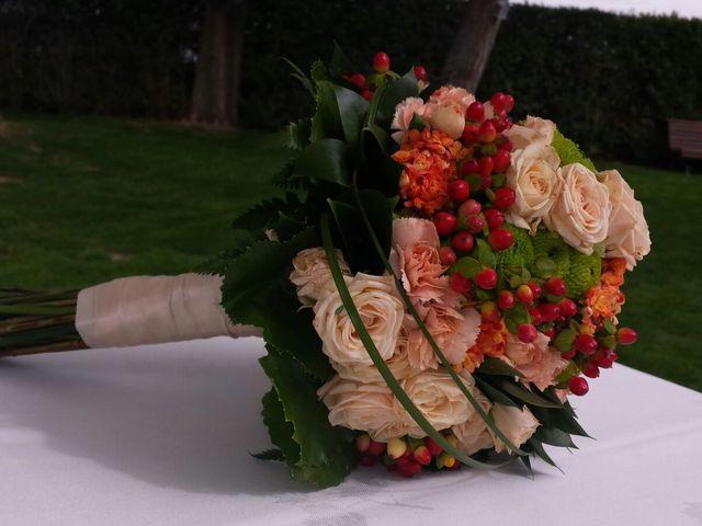 La boda de Juanan y Irene en El Olivar, Madrid 5