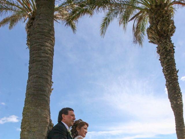 La boda de Hanspeter y Maritza en Torrevieja, Alicante 15