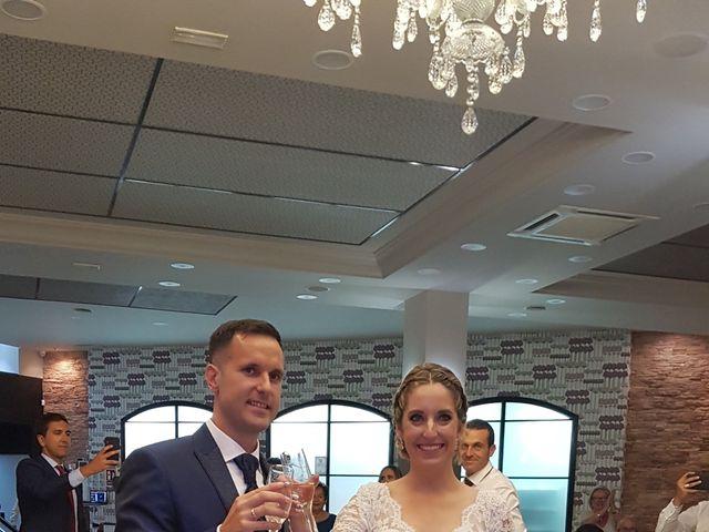 La boda de Aurelio  y  Elena en Velez Malaga, Málaga 6